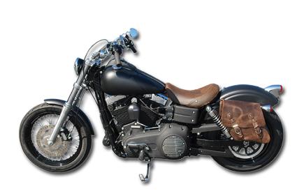 Sissy Bar Detachable Harley Davidson Sportster